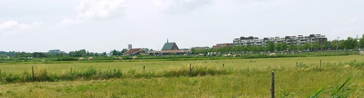 cropped-cropped-Barendrecht-in-de-verte.jpg